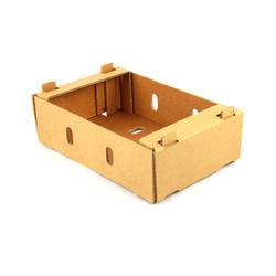 fruits corrugated box 3