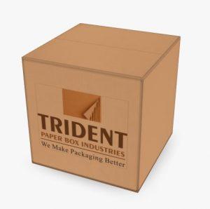 trident custom printed box
