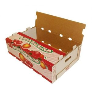 fruits corrugated box 1